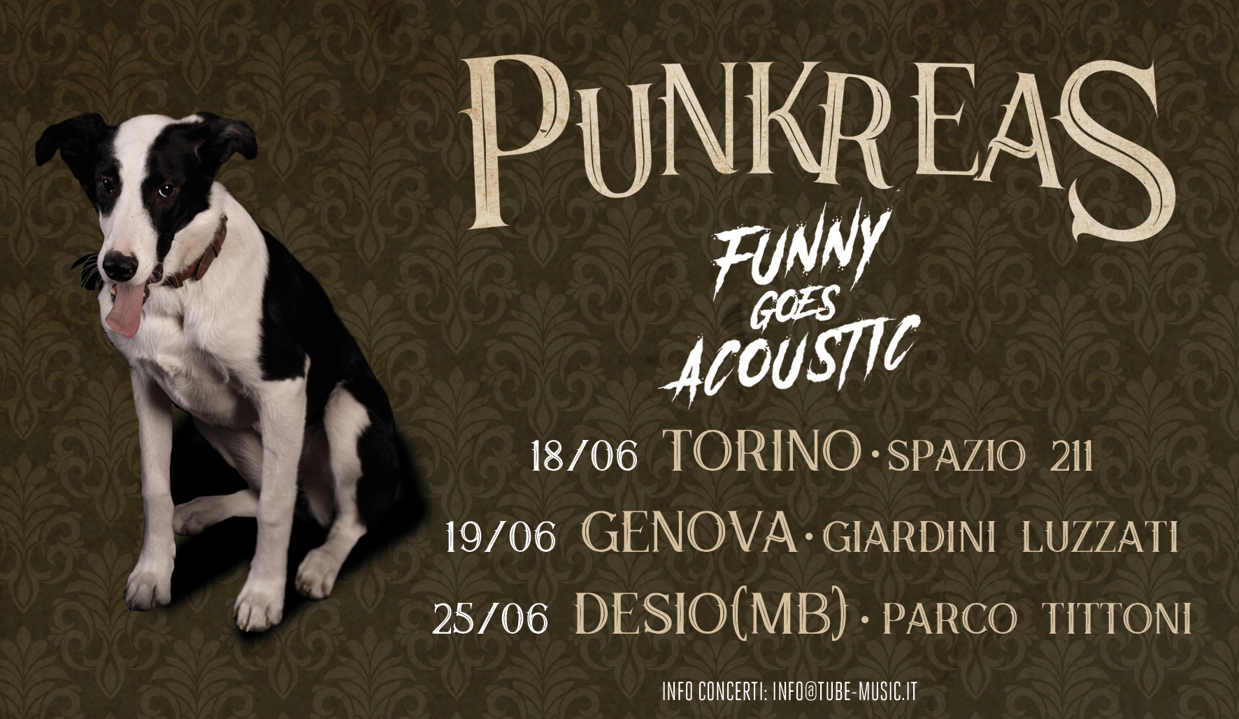 PUNKREAS - Funny Goes Acoustic - Banner date